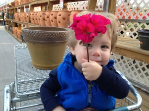 my favorite little flower, with a flower ;)