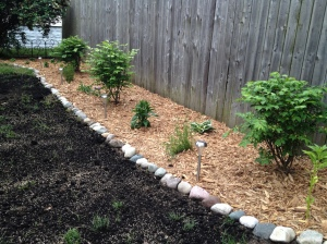 side yard plantings